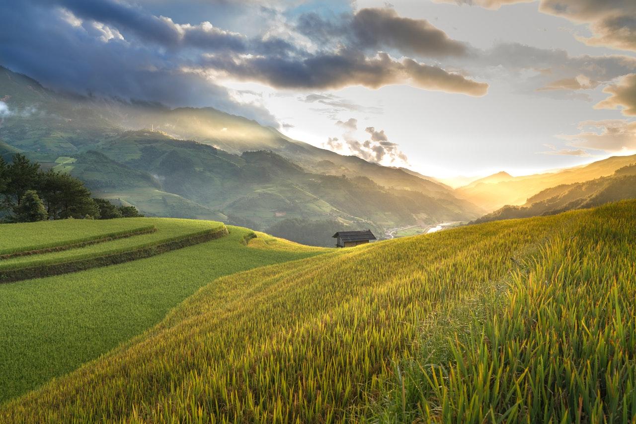 Las servidumbres de paso: qué son y cómo recuperar su posesión